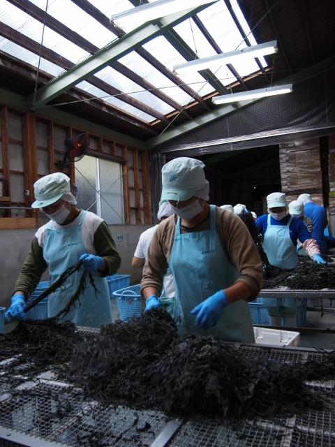 2011年9月、かわむらの唯一残った工場では芯抜きの作業が行われていた
