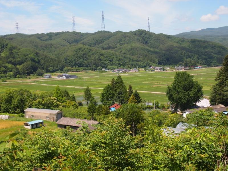 川内村の山から見下ろす田園風景。今は電気の走っていない鉄塔が向こうに