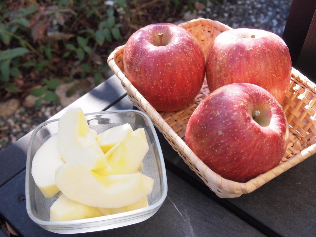 陸前高田から届いた米崎リンゴ。今年は特においしいそうです